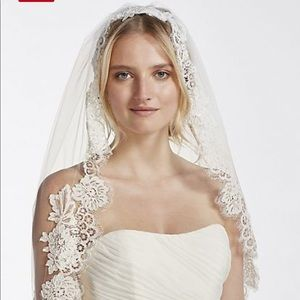 David's Bridal mid veil with trailing lace